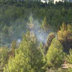 ΣΠΑΥ πυρκαγιά Καισαριαννής