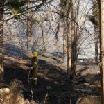 πυρκαγιά υπαίθρω Βύρωνα